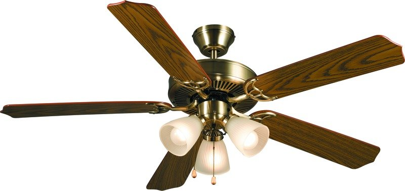livecopper ceiling products lifestyle apollo in large fan eurolux