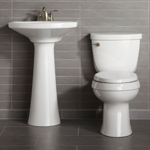 Kohler K 4008 0 Reveal Quiet Close With Grip Tight Bumpers
