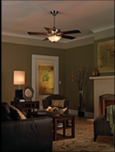 Lutron ma lfqhw wh maestro fan control and dimmer kit white wall the maestro fanlight control works with nearly all types of ceiling fans and lights click each to enlarge mozeypictures