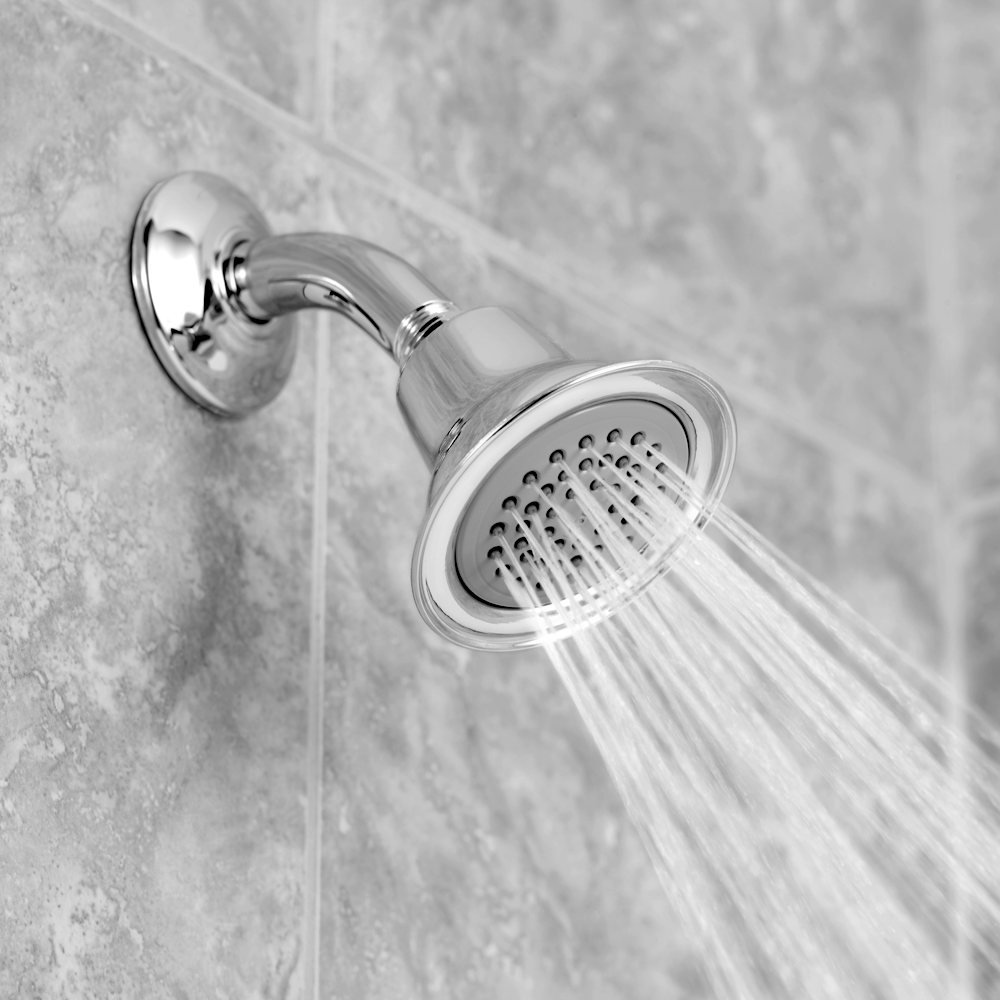 Moen 6303EP One-Function Eco-Performance Shower Head, Chrome ...