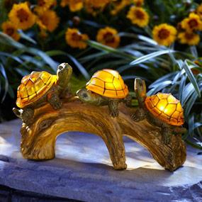 Moonrays turtles on a log