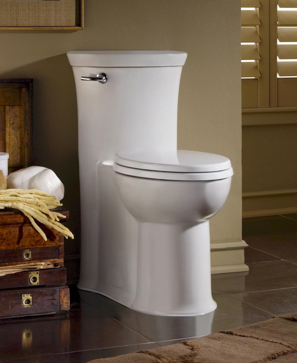 10 Inch Rough Toilet