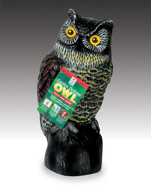 Amazoncom Easy Gardener 8001 Garden Defense Owl Home Pest