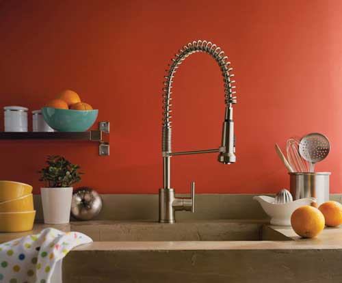 Danze D455158ss Parma Single Handle Pre Rinse Faucet