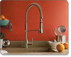 Danze Parma Single Handle Pre Rinse Kitchen Faucet
