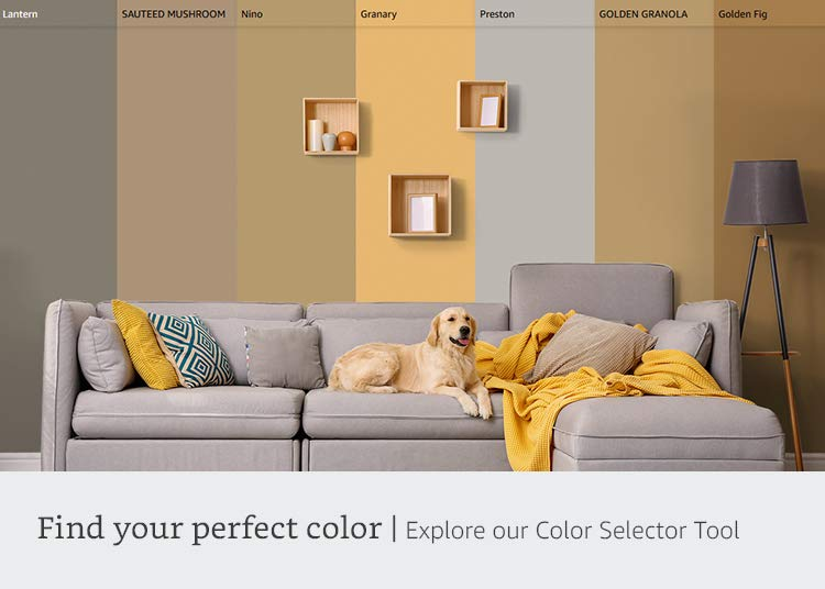 Find your perfect color | Explore our Color Selector Tool