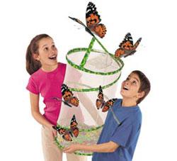 Live Butterfly Pavilion