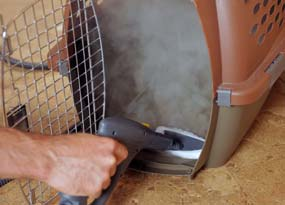 Vapamore Primo Steamer