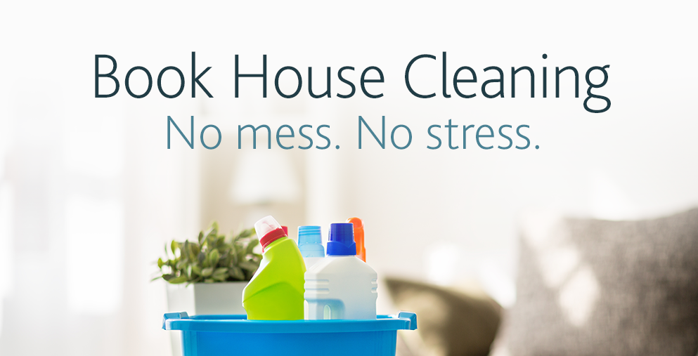Book House Cleaning on Amazon