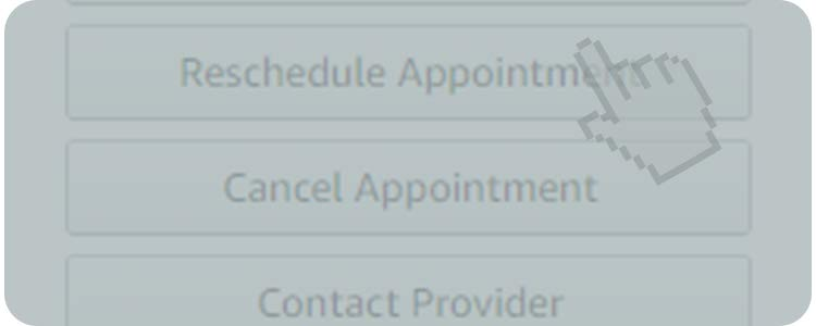 Click 'Reschedule Appointment'