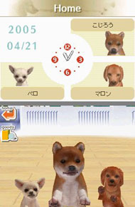 Three puppies saying hi to you in Nintendogs Dachshund & Friends