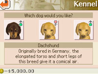 Shopping for a dog at the kennel in Nintendogs Dachshund & Friends