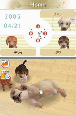 Nintendogs And Cats Cheats Money