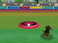 Playing frisbie with your dog in Nintendogs Dachshund & Friends