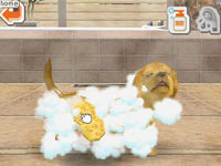 Using the Ds stylus to give your Lab bath in Nintendogs Lab & Friends