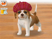 Dog wearing a hat in Nintendogs Lab & Friends