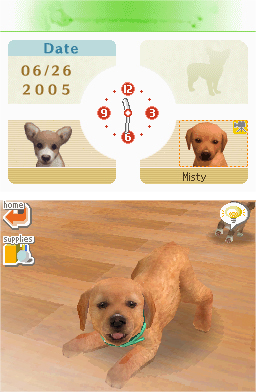 Amazon Com Nintendogs Lab Amp Friends Artist Not Provided