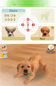 Your Lab puppy getting frisky in Nintendogs Lab & Friends