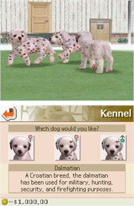 Nintendogs And Cats Best Dog For Competitions