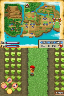 Amazon com: Harvest Moon: Island of Happiness: Video Games