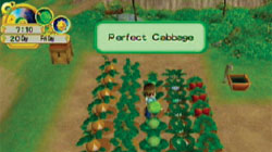 Tilling the fields in 'Harvest Moon: Tree of Tranquility'