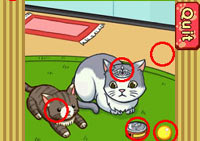 Learning from pets in 'Smart Girl's Party Game'