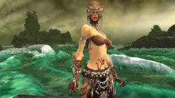 A female Ritualist in 'Guild Wars Factions'