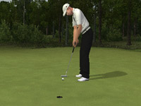 Precision putting in 'EA Sports Tiger Woods PGA Tour 10