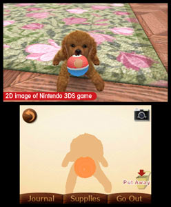 Your new Toy Poodle ready for play time in Nintendogs + Cats: Toy Poodle and New Friends