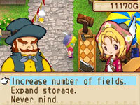 Making decisions regarding production expansion in Harvest Moon: Grand Bazaar