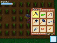 Equipping tools for farming in Harvest Moon: Grand Bazaar