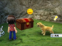 Exploring the island with your pet in Go Vacation