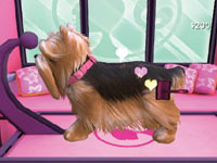 Grooming techniques dogs love in Barbie Groom & Glam Pups