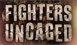 Fighters Uncaged game logo