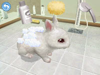 Giving your bunny a good cleaning in Petz Bunnyz Bunch