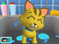 A happy cat after her bath in Dora & Kai-Lan's Pet Shelter