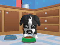 Feeding a puppy in Dora & Kai-Lan's Pet Shelter
