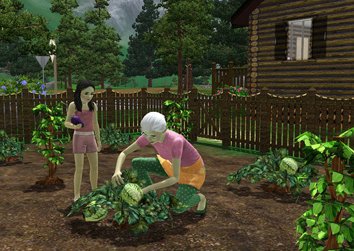An elderly and young Sim working together in the garden in The Sims 3: Hidden Springs
