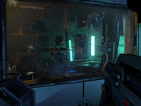 A first-person view of confined alien Facehugger varieties behind glass in Aliens: Colonial Marines