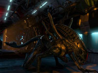 Aliens moving up all sides of a passage towards you in Aliens: Colonial Marines