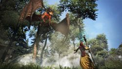 Preparing a magic attack against an airborn dragon in Dragon's Dogma