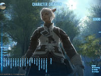 Customizing a Miqo'te character in Final Fantasy XIV: A Realm Reborn