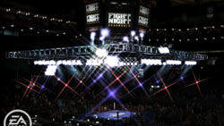 Arena an ring example from 'Fight Night Round 4'