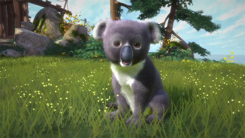 Amazon.com: Kinectimals - Now with Bears - Xbox 360