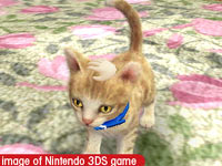Petting a kitty in Nintendogs + Cats: Toy Poodle and New Friends