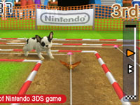 A French Bulldog involved in an in-game event in Nintendogs + Cats: French Bulldog and New Friends