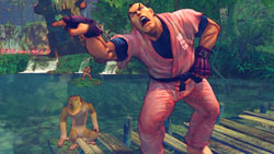 Joke character Dan monkeying around in 'Street Fighter IV'