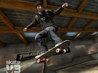 2-6 skater online multiplayer and co-op support in Skate 3