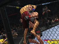Going for a take down in UFC Undisputed 2010