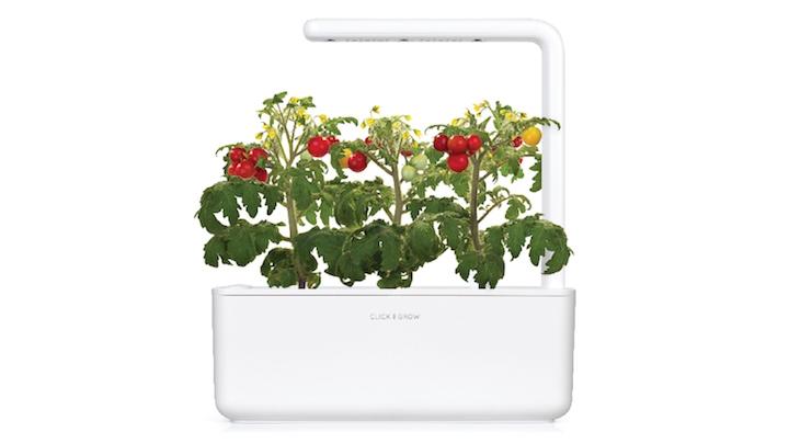 Click & Grow Smart Garden 3 Indoor Gardening Kit (Includes Basil Capsules), White 13